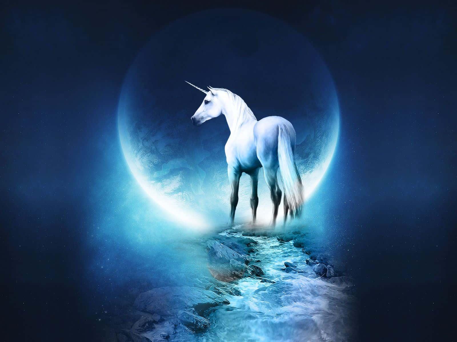 Unicorn Wallpaper Chromebook Guide